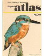 Kapesní atlas ptáku