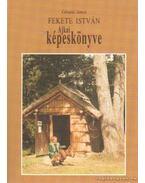 Fekete István Ajkai képeskönyve
