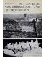 Der Travertin von Ehringsdorf und seine Fossilien