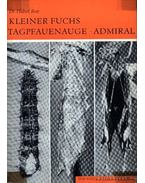 Kleiner Fuchs Tagpfauenauge Admiral (A kis rókalepke, nappali pávaszemlepkle, atalantalepke)