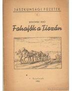 Fahajók a Tiszán