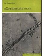 Rauberische Pilze (A heterotróf gombák)