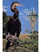 Birds throughout the World
