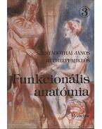 Funkcionális anatómia 3
