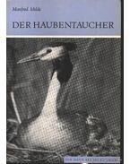 Der Haubentaucher (A búbos vöcsök)
