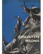 Geschützte Wildnis (Védett vadvilág)