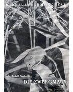 Die Zwergmaus (A törpeegér)