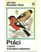 Ptáci v lesích a horskych oblastech