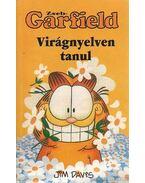 Zseb-Garfield 17.