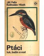 Ptáci luk, bazin a vod
