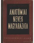 Anatómiai nevek magyarázata