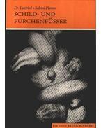 Schild- und Furchenfüsser (A féregcsigák és a maradványcsigák)
