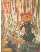 Képes Újság 1966. VII. évf. I-II. kötet (teljes)