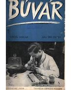 Búvár 1935. (teljes 1. évfolyam)