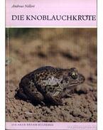 Die Knoblauchkröte (A barna ásóbéka) 1990.