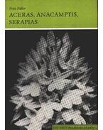 Aceras und Anacamptis Serapias (Bábukosbor, vitézvirág, nyelvorchidea)