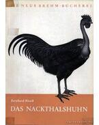Das Nackthalshuhn (A kopasznyakú tyúk)