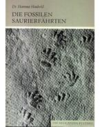 Die Fossilen Saurierfahrten (Dinoszaurusz csapások kövületei)