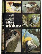 Vel'ky obrazovy atlas vtákov