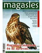 Magasles 41. (2007. február - V. évfolyam 2. szám)