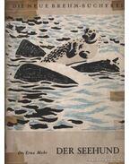 Der Seehund (A tengerikutya)