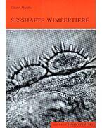 Sesshafte Wimpertiere (Az igazicsillós állatkák)