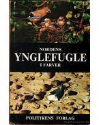 Nordens Ynglefugle I Farver