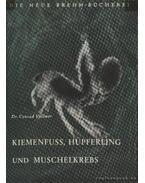 Kiemenfuss, Hüpferling und Muschelkrebs (Héjatlan levéllábú, hátpajzsos levéllábú és héjas kopoltyúlábú rákok)