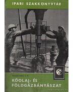 Kőolaj- és földgázbányászat