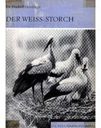 Der Weiss-Storch (A fehér gólya)