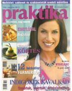 Praktika 2003. augusztus 8. szám