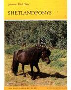 Shetlandponys 1986.