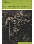 Holzbewohnende Pilze (A fán honos gomba)