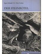 Der Steinrötel 1974.