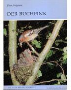 Der Buchfink (Az erdei pinty)