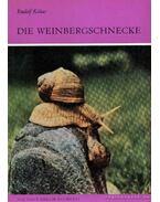 Die Weinbergschenke (Az éti csiga)