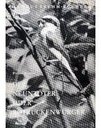 Der Neuntöter oder Rotrückenwürger (A gébicsek avagy a tövihúzó gébics)