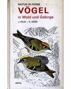 Vögel in Wald und Gebirge