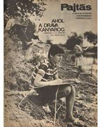 Pajtás 1969. szeptember 37. szám