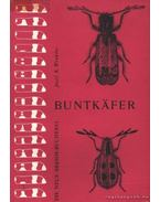 Buntkafer