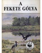A fekete gólya