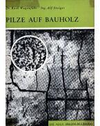 Pilze auf Bauholz (Gombák a fakérgen)