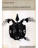 Fossile Schildkröten (Teknősmaradványok)