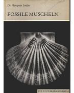 Fossile muscheln (Megkövült kagylók)