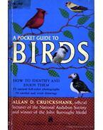 A pocket guide to birds (Zsebkönyv madarakról)