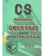 Cs mozaikok Csongrád város történetéből 1980