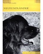 Neufundlander (Újfundlandi) 1966.