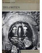 Trilobiten (Trilobiták)