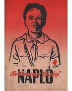 Vöröskeresztes ifjúsági napló