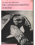 Die Landschildkröten Europas